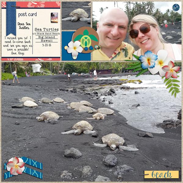 Sea Turtles challenge #11