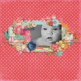 11_06_15-Ollie-web.jpg
