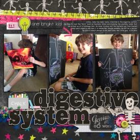 2014_6_24-digestive-system.jpg