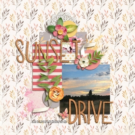 20170717--sunset-drive.jpg