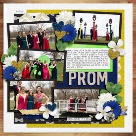 4-18-700AJ-Prom-Group-copy.jpg