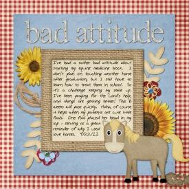 4_bad_attitude_copy.jpg