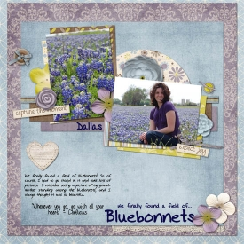 4_bluebonnets_copy.jpg