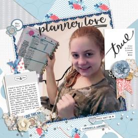 5-17-700Planner-copy.jpg