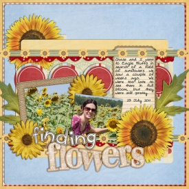 7-23-sunflowers.jpg