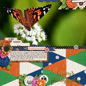 9-17-700Sydney_s-butterfly-copy.jpg