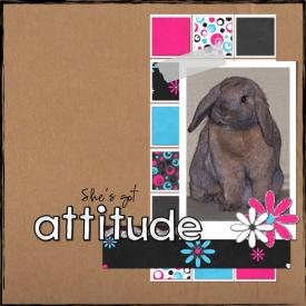 Attitude2.jpg