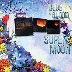BlueBloodSuperMoon.jpg