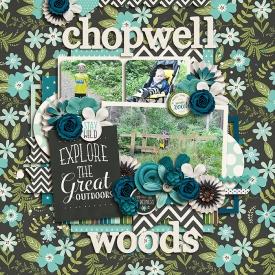 ChopwellWoods700.jpg
