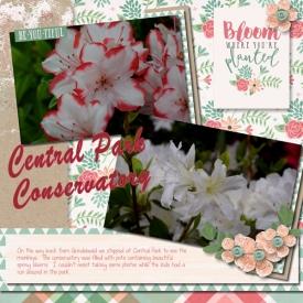 City-Park-Conservatory-001.jpg
