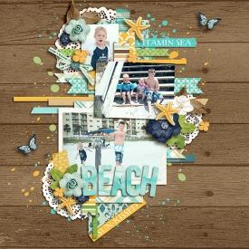 DSI_Beach_CT7.jpg