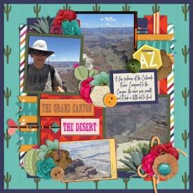 Day-Five-Grand-Canyon-The-Desert.jpg