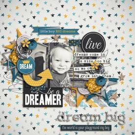 DreamerSSDSB700.jpg
