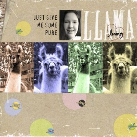 Llama-Loving.jpg