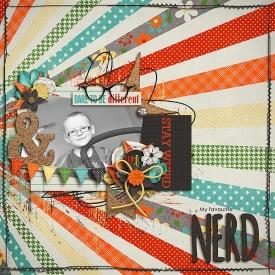 NerdSSDSB700.jpg