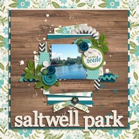 SaltwellParkSSDSB700.jpg