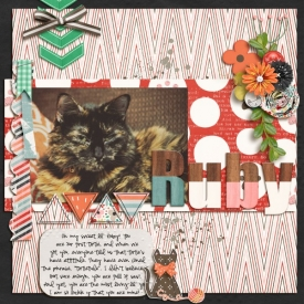 Sassy_Cat_600_x_600_.jpg