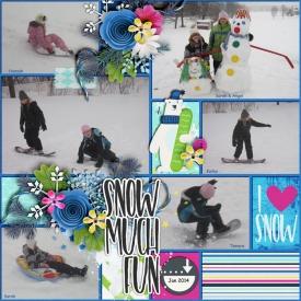 SnowMuch_Fun_Jan_2014_smaller.jpg