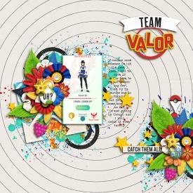 TeamValor700.jpg