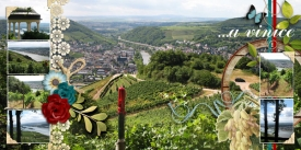 fb_ruedesheim_05_vinice2_small.jpg