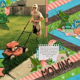 mowingweb.jpg