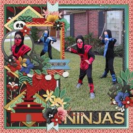 ninjasweb.jpg