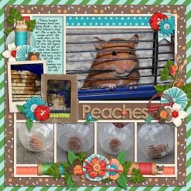 peachesweb1.jpg