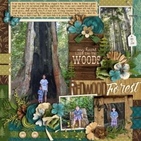 redwoods2018web.jpg