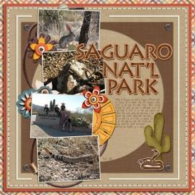 saguaro-np-wr.jpg
