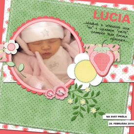 scrapbooking_gejdoma_jahodka_small.jpg