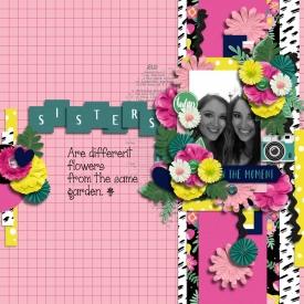 sisters2018web.jpg