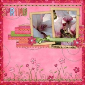 ssd_swtsb_29_spring.jpg