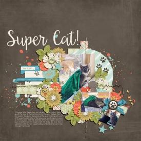 supercatgallery.jpg