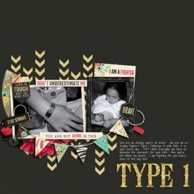type1sm.jpg