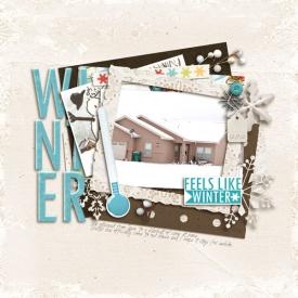 winter-wr.jpg