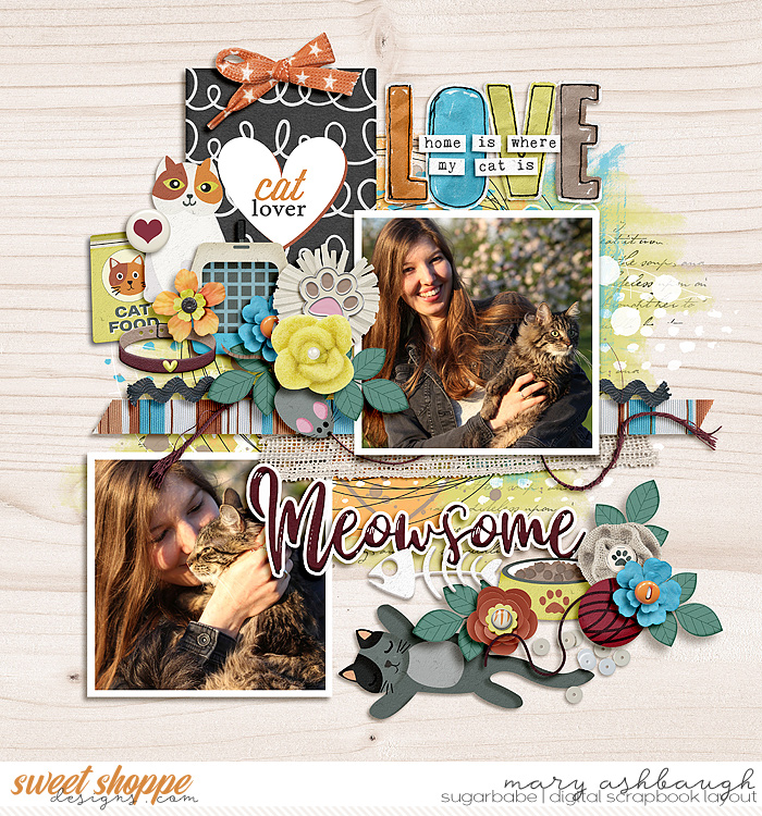 Meow_SSD_mrsashbaugh
