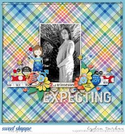 040620-Expecting-Sean-Watermark.jpg