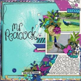 071014mrpeacock700.jpg