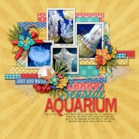 100513-Aquarium-of-the-Bay-700.jpg