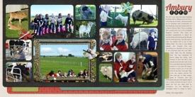 12-08-10-Ambury-Farm-double.jpg