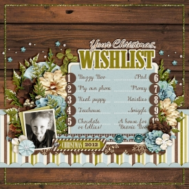 12-11-21-Elisa_s-wishlist-700.jpg