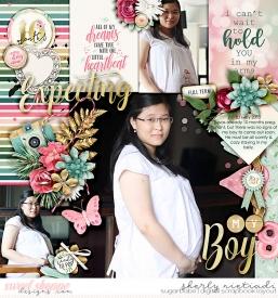 120503_s_pregnancy-copy.jpg