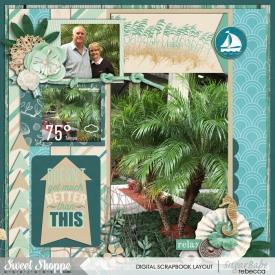 12_Florida_palm-trees.jpg