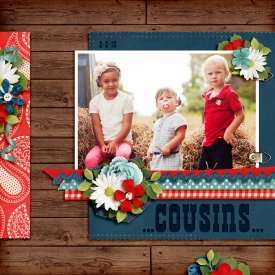 13-02-02-Cousins-700.jpg