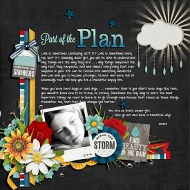 13-03-02-Part-of-the-plan-700.jpg