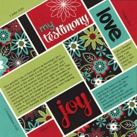 14-02-01-My-testimony-7001.jpg