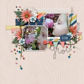 140423-In-Bloom-700.jpg