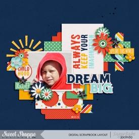 15-01-20-Dream-Big-700b.jpg