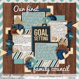 15-02-02-Family-council-700b.jpg