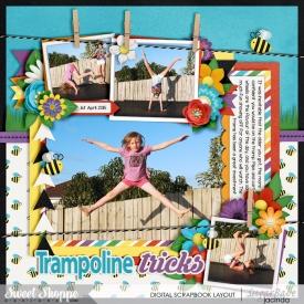 15-04-01-Trampoline-tricks-700b.jpg